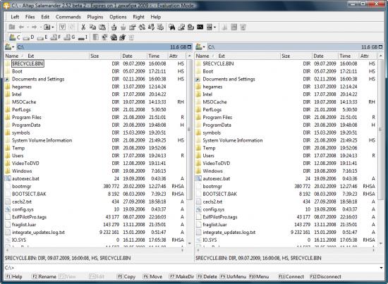 Скриншот Altap Salamander 3.0 Beta 1