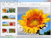Скриншот VintaSoft Imaging .NET SDK 8.6
