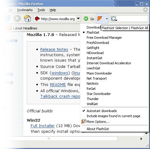 Скриншот FlashGot 1.2.0.2
