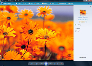 Скриншот Windows Live Photo Gallery 12.0.1308.1023