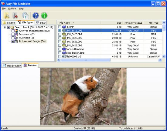 Скриншот Easy FAT File Undelete 3.0