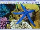 Able Photo Slide Show 2.8.4.2